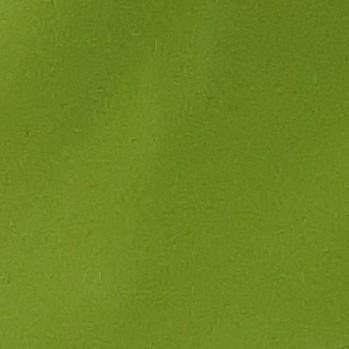 Ostrá zelená